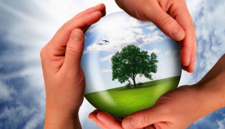 Экологиялық  мәдениет қалыптастыру маңызды